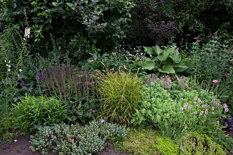 Zenfolio jef cools photography de tuin van hilda mari n in ham - Geplaveid voor allee tuin ...